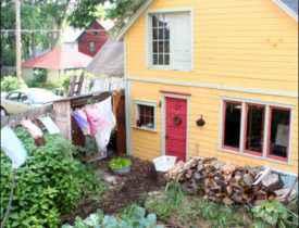 Homesteading for Renters