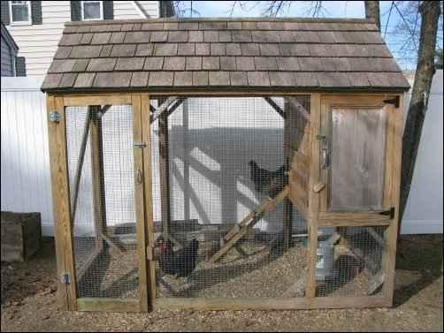 Designing A Chicken Coop: A Work in Progress