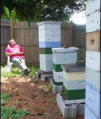 homesteading, homestead, homestead.org
