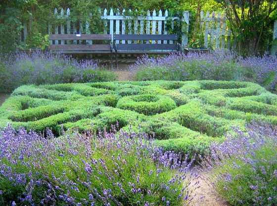 shakespearian-garden homesteading, homestead. homestead.org