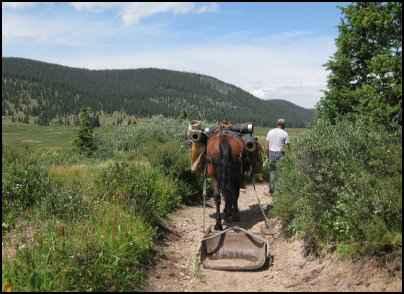 Using workhorses, horse power