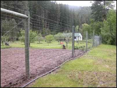 Predation Prevention predator fencing