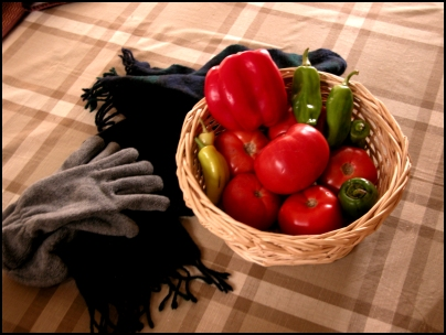 Growing Tomatoes and Peppers in Winter