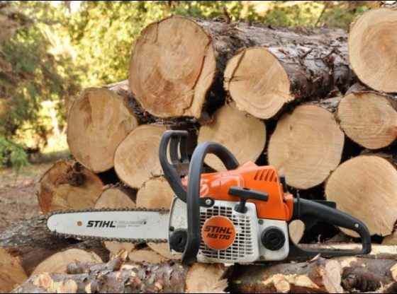 woodcutting, cut firewood, Homestead Woodcutter, homesteading