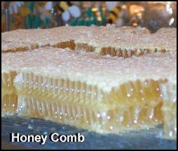 honeycomb Weston A Price