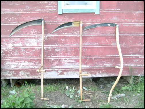 scything, learn how to use a scythe, scythe techniques, types of scythes, homesteading, homestead. homestead.org