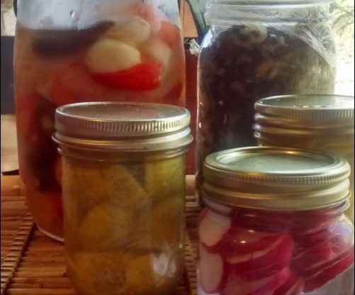 fermenting foods at home