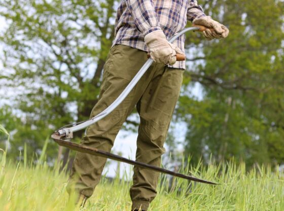 scything, learn how to use a scythe, scythe techniques, types of scythes