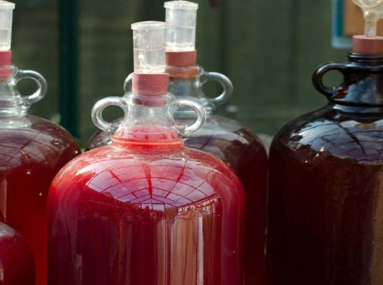 homesteading, homestead, Homemade wines are easy; fill your own glass and those of your friends and family as they make great gifts. And it's fun to make wine at home.