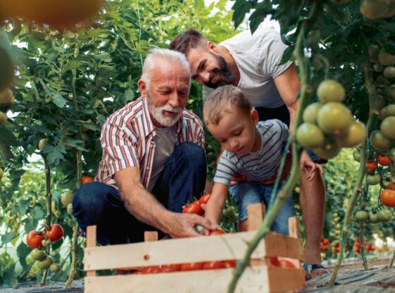 Multi Generational homesteading