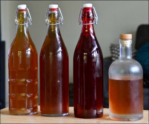Make your own Fermented Drinks, Make your own kombucha, Make your own kefir, homesteading, homestead