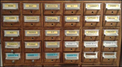 Seed Library, Seed catalog