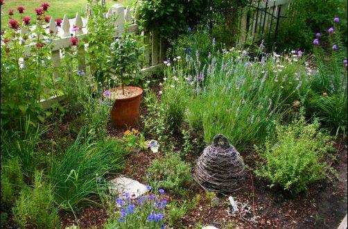 Designing an Herb Garden, herb garden design, homesteading, homestead, gardening