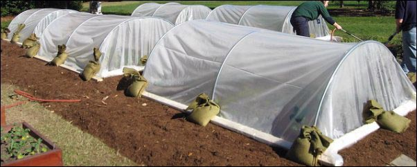 Garden Season Extenders and Cold Weather Husbandry, DIY Low tunnel, fall and winter gardening, basic animal husbandry, cold weather gardening, homesteading