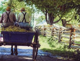 How to Do Things book, homesteading in the past