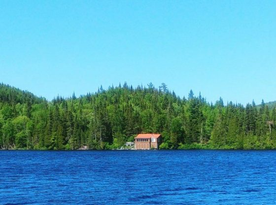 isolated cabin, Guide-to-covid-19-coronavirus
