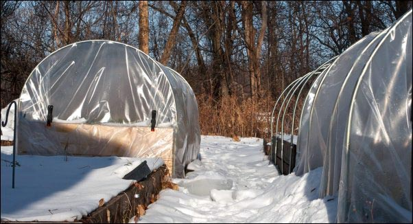 high tunnel, hoop house, hoop tunnel, year-round gardening, homesteading