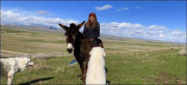 woman riding donkey in montana