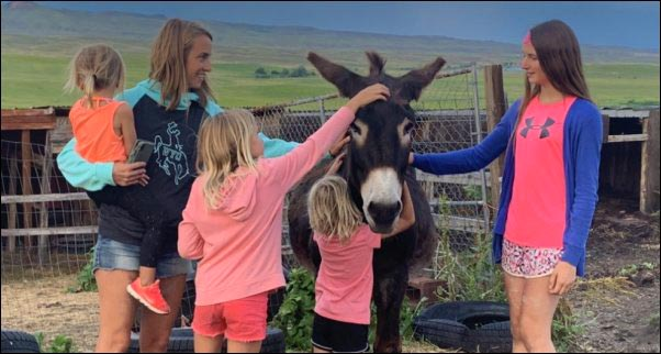 When we have visitors our donkey is usually a main attraction on our homestead