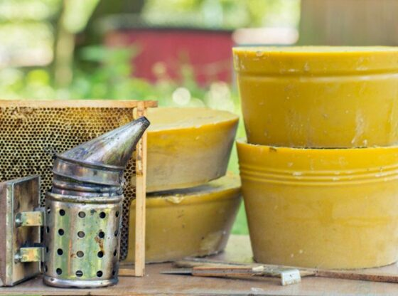 Using Beeswax Around the Homestead