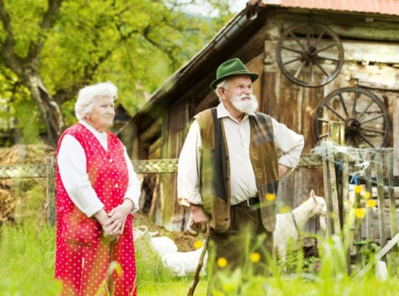 old ways of doing things Sources for Homesteading Knowledge