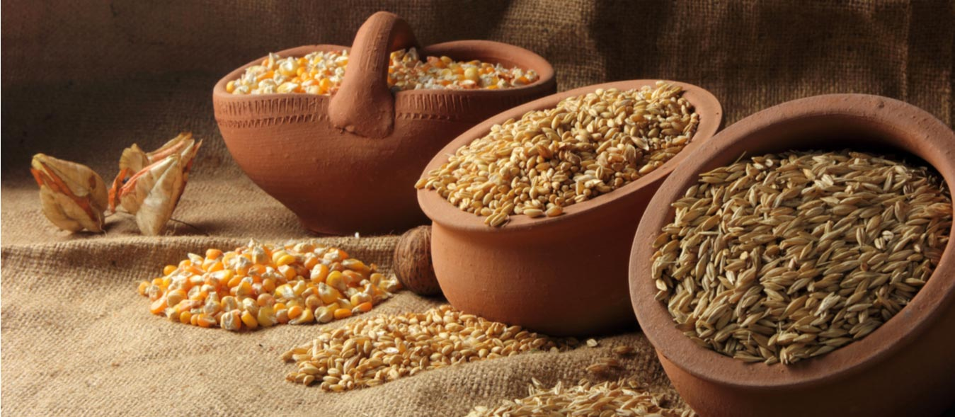 Staple Crops for the Homestead Seeking Self-Sufficiency