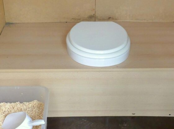 pros-and-cons-of-composting-toilet