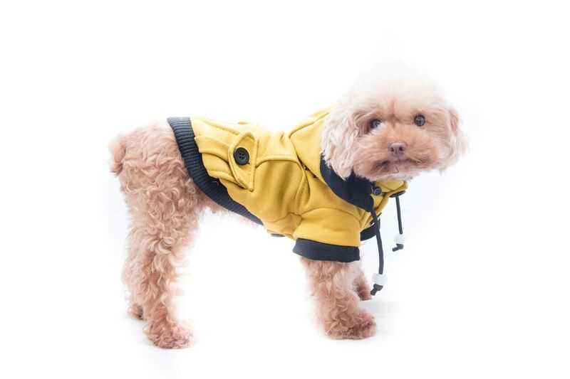 976d337d1bc Ρούχο Σκύλου Pet Camelot Dogs Coat Κίτρινο 3966 Ρούχα για Σκύλους ...