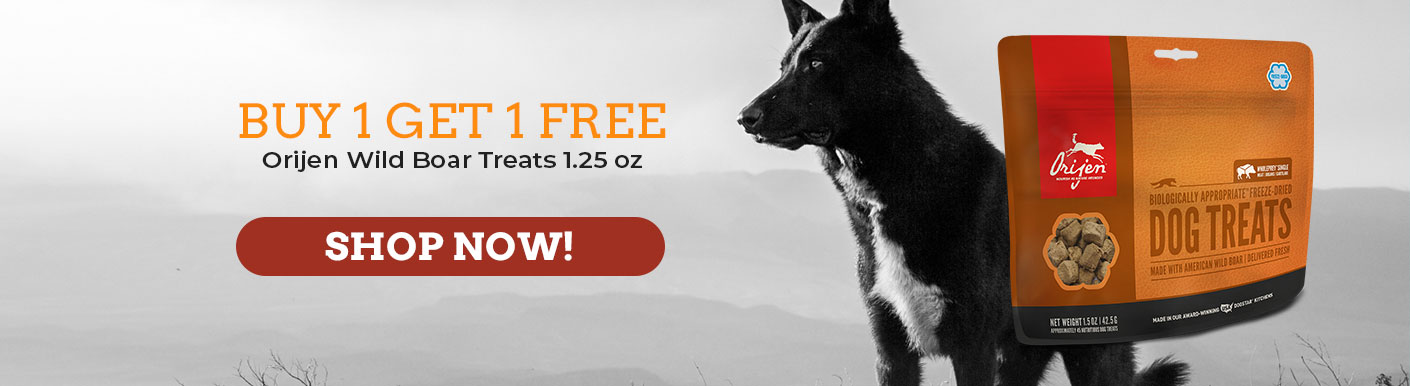 Buy One Get One Free Orijen Wild Boar Treats