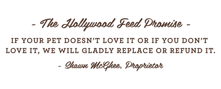 Hollywood Feed Promise
