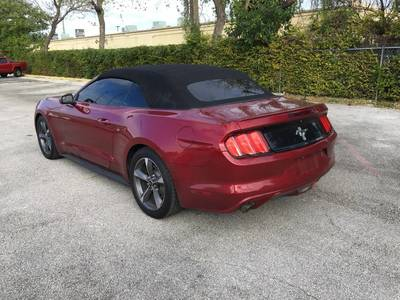 Used FORD MUSTANG 2015 MIAMI V6