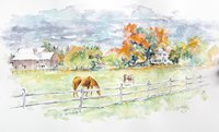 Grazing Watercolor