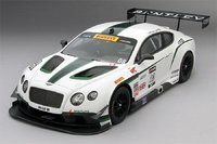 2014 Bentley GT3 #08 Sonoma GP 3rd Place Dyson Racing 1:18 True Scale Miniatures