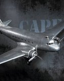 Dakota DC-3 Aircraft Replica Model Airplane by Authentic Models