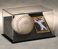Softball & Card Display Case: Clear Dome