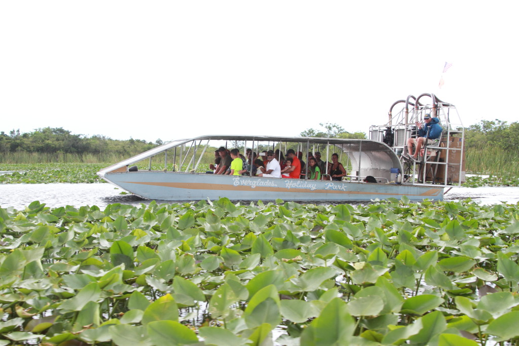 boat in the everglades