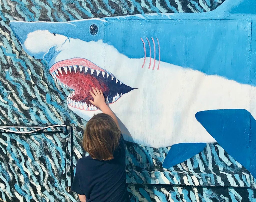 mural of a whale with boy sticking his hand in mouth