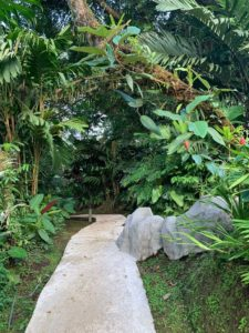 How to Find Hotels and Family Friendly Destinations in Costa Rica