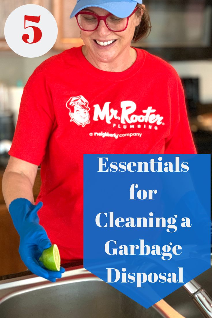 pin for cleaning a garbage disposal
