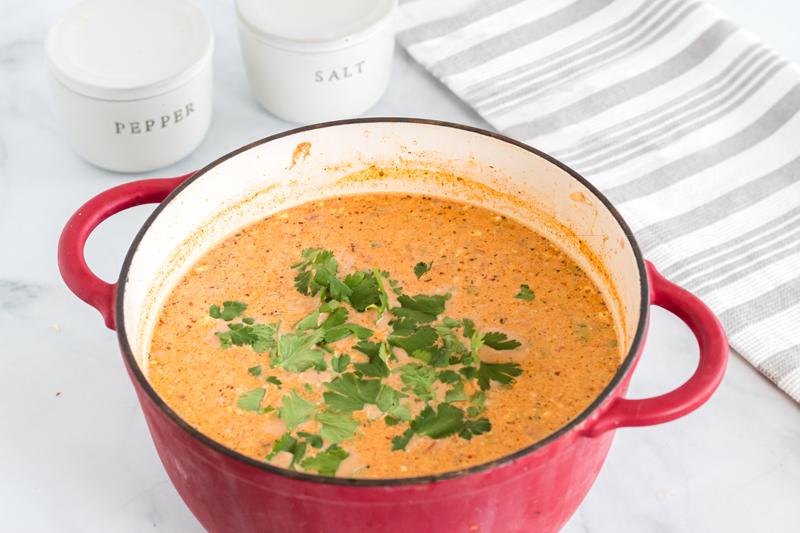 red bowl of enchilada soup