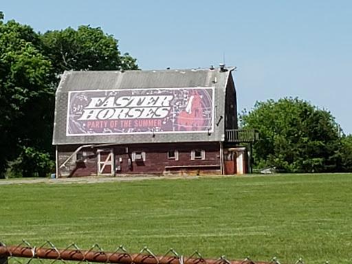 Faster horses barn