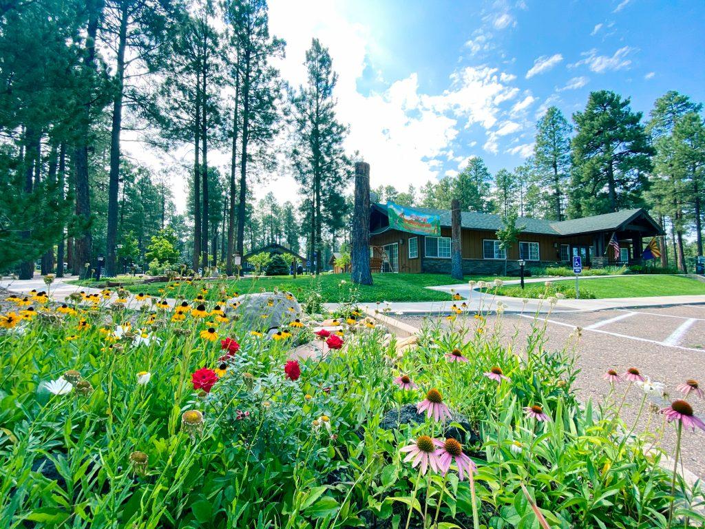 Worldmark Pinetop