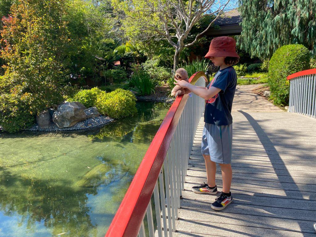 Boy Standing at Terrace Lagoon