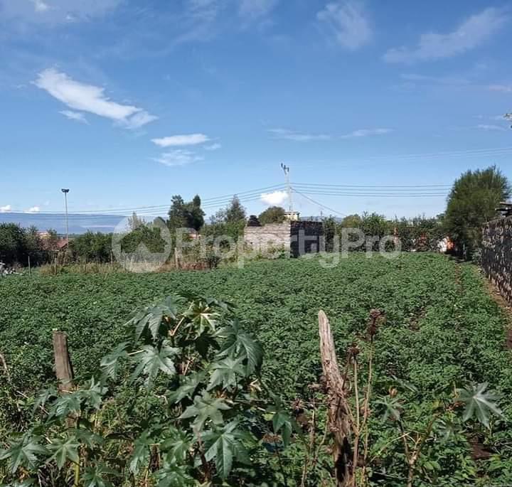Land for sale Nakuru - Nairobi Rd Gilgil, Naivasha, Naivasha Naivasha Naivasha - 1