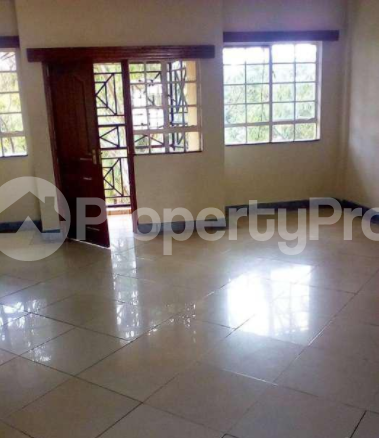 3 bedroom Flat&Apartment for rent Mfangano Island Ndhiwa Homa Bay - 1