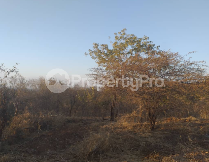 Stands & Residential land Land for sale Victoria Falls Matabeleland North - 1