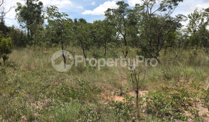 Farm & Agricultural land Land for sale Harare South Harare - 0