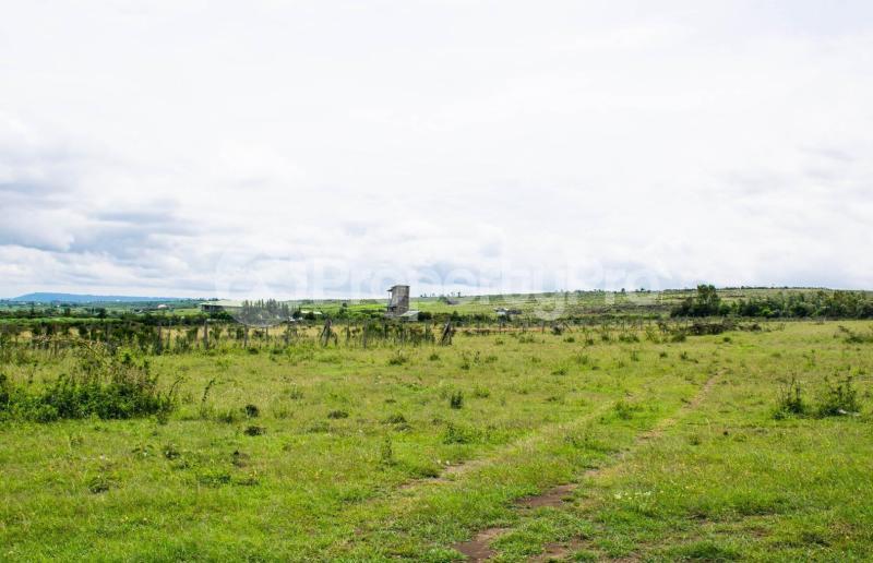 Land for sale Nakuru Rift Valley, Naivasha, Naivasha Naivasha Naivasha - 9