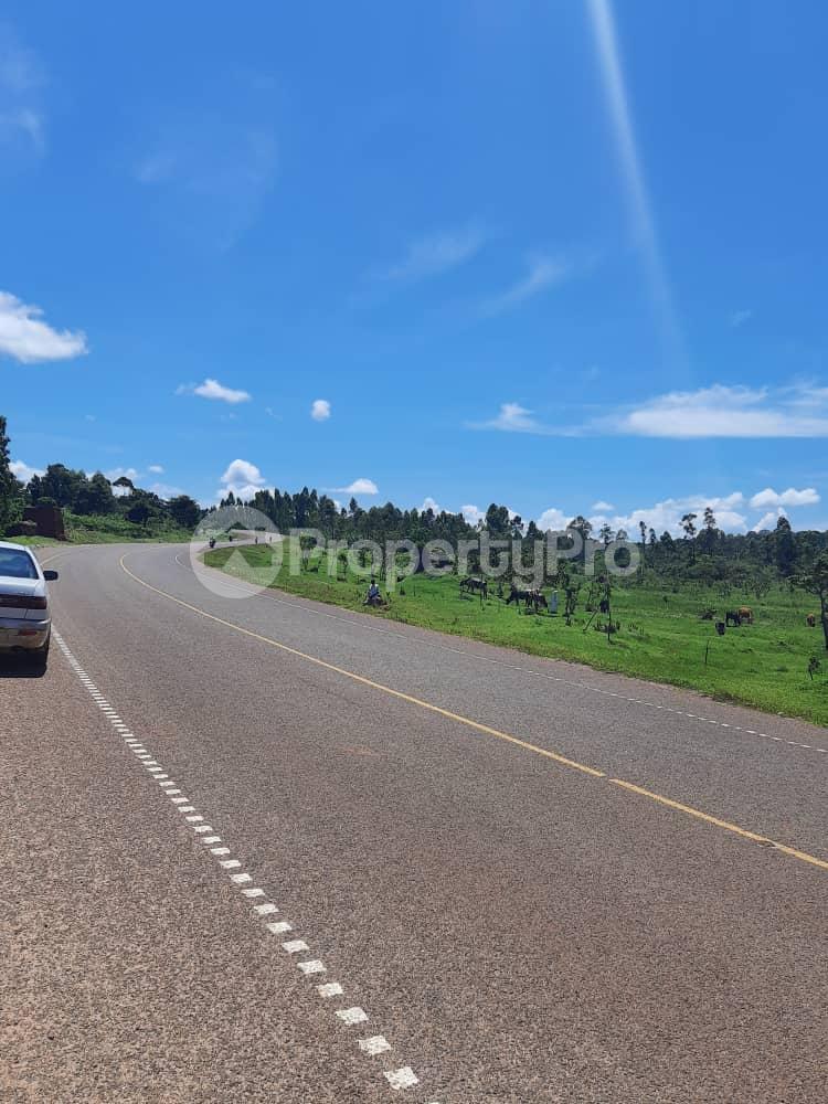 Land for sale Buikwe Nyenga Buikwe Central - 7