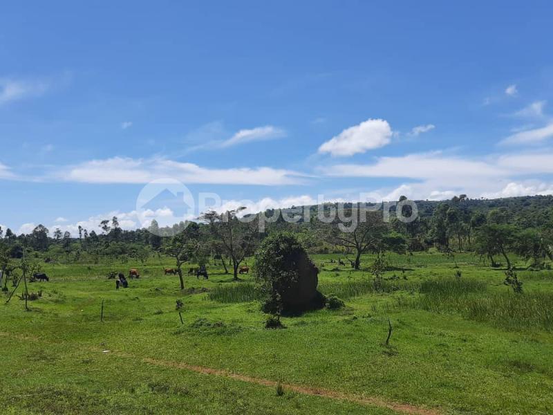 Land for sale Buikwe Nyenga Buikwe Central - 2